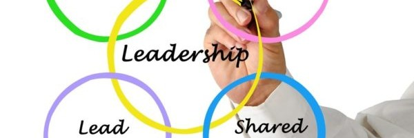 La Leadership flessibile